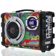 Cassa speaker Karaoke portatile ricaricabile radio, equalizzatore, bluetooth e microfono incluso